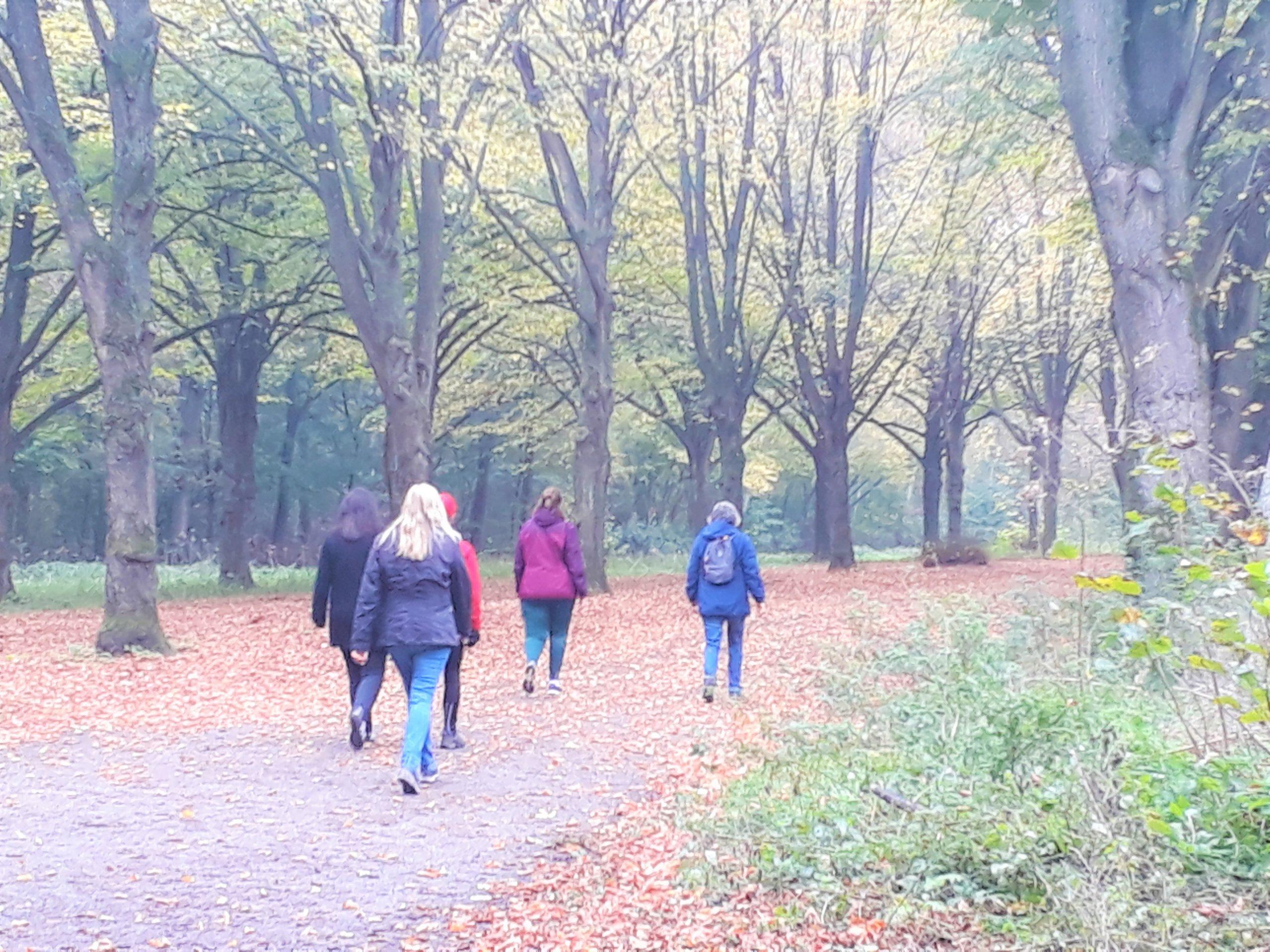Fitstap deelnemers aan het wandelen in het Amsterdamse Bos, MindWalker